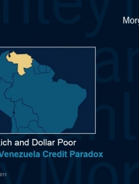 The Venezuelan economic paradox